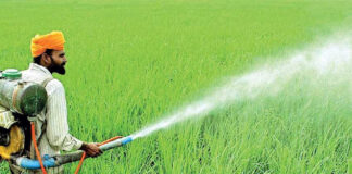 President to make Sri Lanka the first country in the world to end use of chemical fertilizers completely