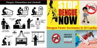 Sri Lanka Dengue Fever May Increases with Monsoon Rains