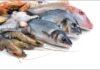 Sri Lanka Fish Export market