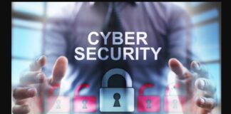 Formulation of a draft bill for imposing cyber protection laws